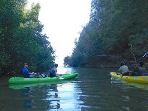 Canoe Kayak Samara