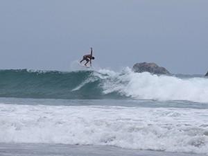 cours de surf samara